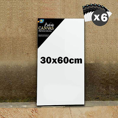 "6 x Artist Blank Canvas 12x24""/30x60cm 3/4"" Thick Wholesale Bulk Lots Art Supply"