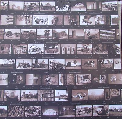 """12""""X12"""" Scrapbook Single Sided Paper Country Life Proofsheet NEW"""