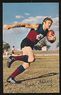 1971 Mobil Fitzroy Kevin Murray card number 10 Lions Footy Photos ++++