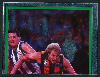 Scanlens 1984 Sticker No. 91 Peter Knights Foil Hawthorn Hawks