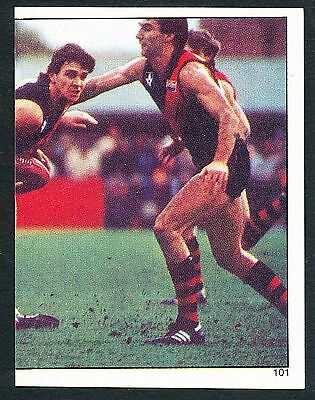 Scanlens 1984 Sticker No. 101 Mervyn Neagle Essendon Bombers