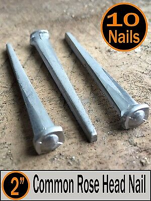 "(10) 2"" - COMMON ROSE HEAD NAIL  - Antique Vintage Rustic Nails - 6d"