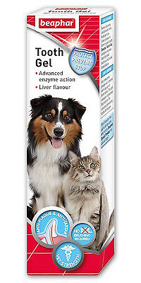 Beaphar Tooth Gel, Dogs & Cats,Liver Flavour, No Brushing Required, Vet Strength
