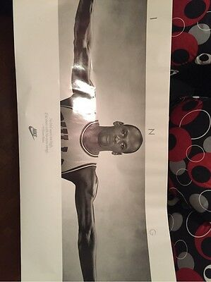 Michael Jordan Wings Poster