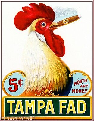 1905 Tampa Fad Rooster Chicken Vintage Cigar Box Label Advertisement Art Print