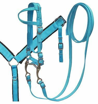 Showman Pony TEAL Nylon Headstall and Breastcollar Set with Grazing Bit! TACK!