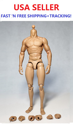 "1//6 Scale Male strong Muscular body JXtoys S02 for ganghood 12/"" Figure ❶USA❶"