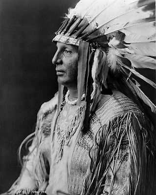 New 11x14 Native American Photo: White Shield, Arikara Indian Chief and Scout