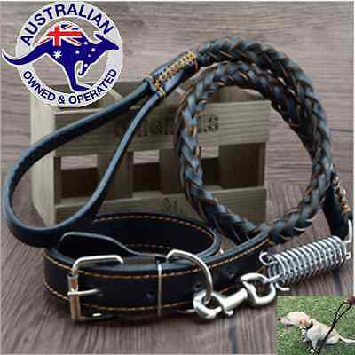 Leather Lead Leash Collar Pet  Strong Safty Solid 120cm/1.2m For Large Dog