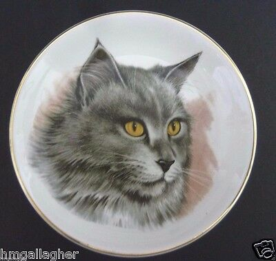 Crown Staffordshire Main Coon Cat Collectible Small Plate