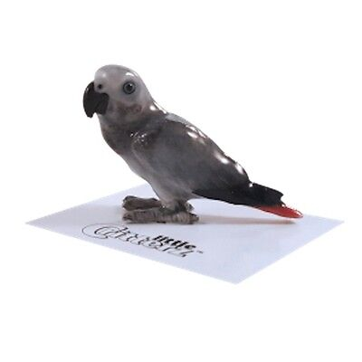 "LC861 Little Critterz - African Gray Parrot named ""Congo""(Buy any 5 get 6th free"