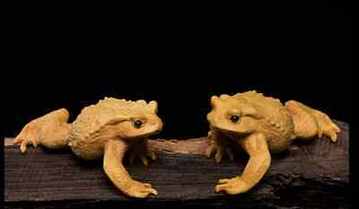 D018 - 7.5*5.5*3.5 CM Carved Boxwood Carving Figurine : Pair of Toads Frogs