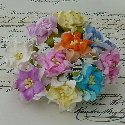 Pack 10 Pretty Gardenia Mixed Flowers Great For  Crafts-Cakes-Favours