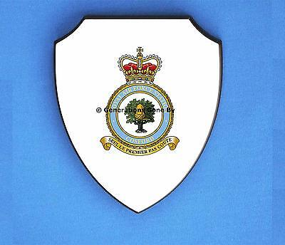 Royal Air Force Station St RAF Mawgan ® Lapel Pin Badge Gift