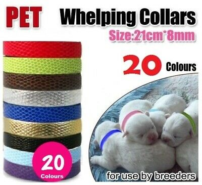Whelping Collars (10 pack) Pet Kittens, Puppies, Cats, Ferrets, Dog Breeders