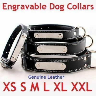 Engravable Genuine Leather Collar Extra Small - Giant Breeds all