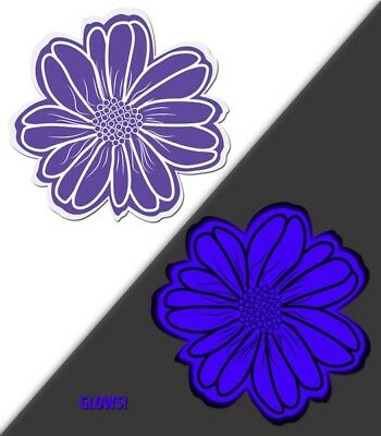Glow in the Dark Purple Animated Daisy Pasties