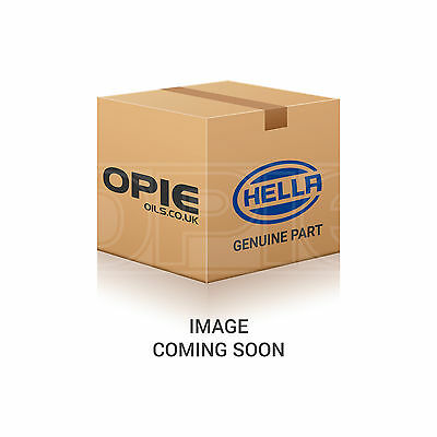 Plastic Key for Battery Isolator / Main Switch | HELLA 9SL 706 729-011