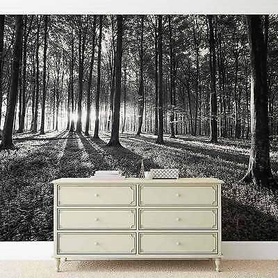 WALL MURAL Flowers Forest Nature XXL PHOTO WALLPAPER (2229DC)