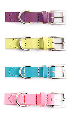 Ancol Indulgence Leather Dog Collar - Choice of Sizes & Colours