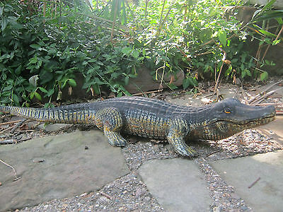 "Unique X-Large Vintage/antique Cast Iron Garden Alligator 29 1/2"" Long"
