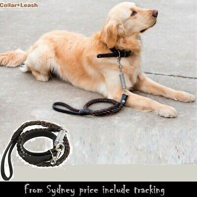 New  Hand Crafted Braided Genuine Real Leather Dog Leash Lead  Black