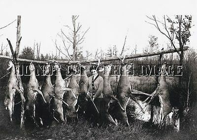 Antique Repro Hunting Photograph Print Woman Rifle With Dead Deer Meat Pole