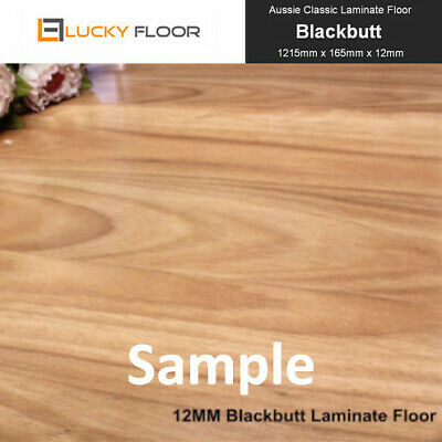 Sample: Blackbutt LAMINATE FLOORING /FLOATING FLOOR /FLOORS /TIMBER LAMINATE