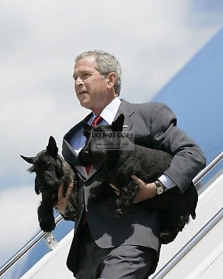 """President George W. Bush With """"Barney"""" And """"Mrs. Beasley"""" - 8X10 Photo (Bb-903)"""