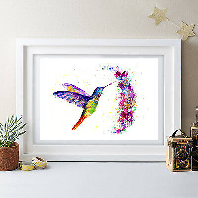 Humming Bird Painting Original Watercolour Print New Signed Pop Art Birds Floral