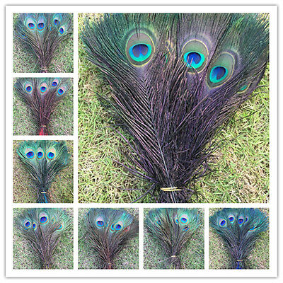 Free shipping 5-100pcs Staining Peacock Tail Feathers about 10-12 Inches""