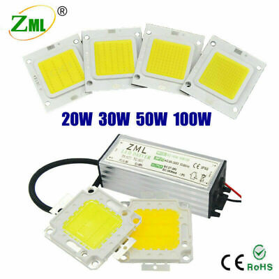 Chip Driver LED 10W-30W 50W 100W Power Supply Transformateur Spot Light 220V