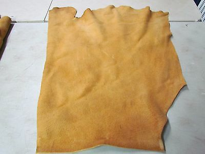 "Moose Hide Native American Dark Home Tanned Marvelously Soft 24"" In By 31"" In"