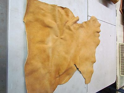 "Moose Hide Native American Dark Home Tanned Hide Amazingly Soft 32"" In By 30"" In"