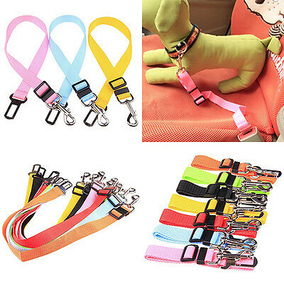 Pet Puppy Dog Cat Car Seat Belt Harness Lead Adjustable Clip Eager Nobby
