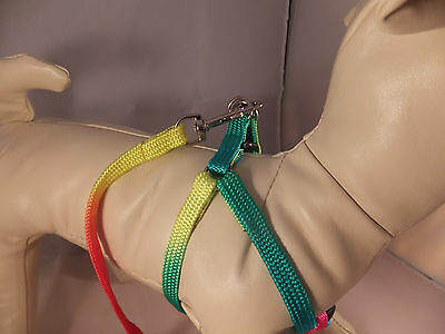 Harness & Lead Set Bright Neon Coloured for Small Dog or Cat  DCO 09