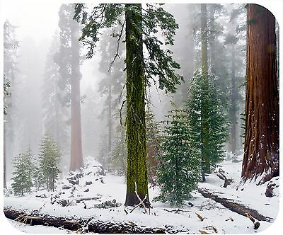 Mouse Pad Personalized Custom Thick Mousepad-Sequoia Trees-Add Text