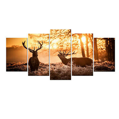 Canvas Print Painting Photo Home Decor Wall Art Animals Picture Landscape Framed