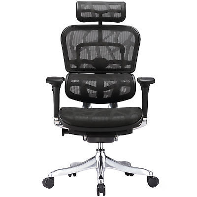NEW Milan Direct Ergohuman V2 Plus Deluxe Mesh Office Chair