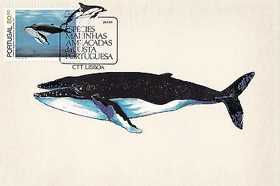 Portugal 1983 Marine Species - Whales, Dolphins, etc. Set of 4 Maximum Cards