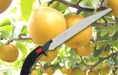 Z-saw PRUNING saw for fruit trees, made in Japan