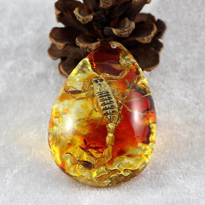 Scorpion Insect Stone Resin Amber Pendant Necklace jewelry Collectible Decor