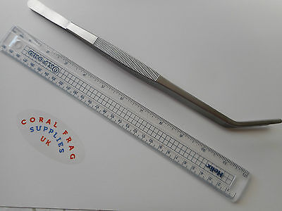 Reptile Long Reach Curved Feeding Tweezers 30Cm Quality Stainless Steel
