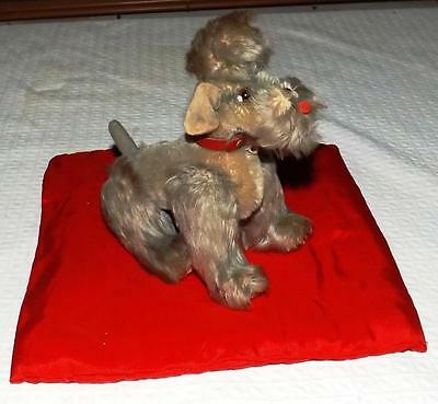 VINTAGE EARLY STEIFF MOHAIR Snobby Poodle Dog  *NO RESERVE