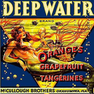Okahumpka Deep Water Brand Florida Mermaid Orange Fruit Crate Label Art Print