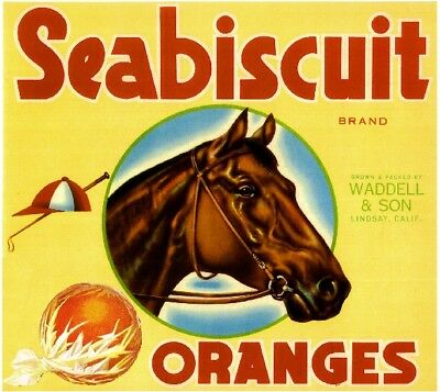 Lindsay California Seabiscuit Brand Horse Orange Citrus Fruit Crate Label Print