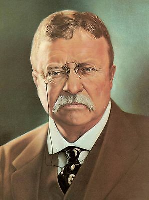 Theodore Roosevelt 26th U.S. American President United States Portrait Poster