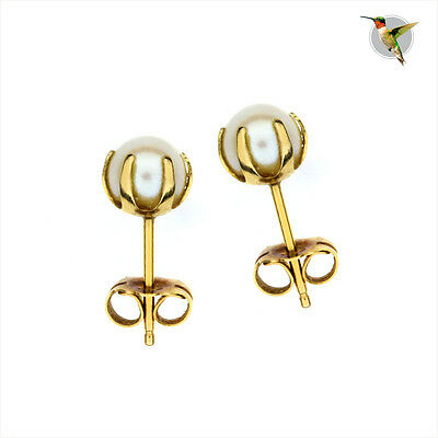 14k Solid Yellow Gold Cultured Pearl Earrings  #2637