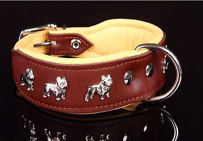 Quality Genuine Leather French Bulldog Dog Collar Hand Stitched Made In Europe