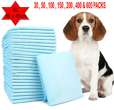 rDog Puppy Extra Large Training Pads Pad Wee Wee Floor Toilet Mats 60 x 45cm 200